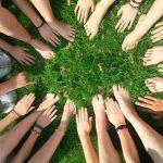Grassroots Foundation