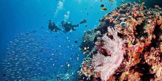 QLD Tourism Grants