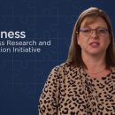 Business Research and Innovation Initiative (BRII)